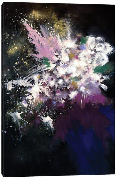 Throwing Stars Canvas Art Print