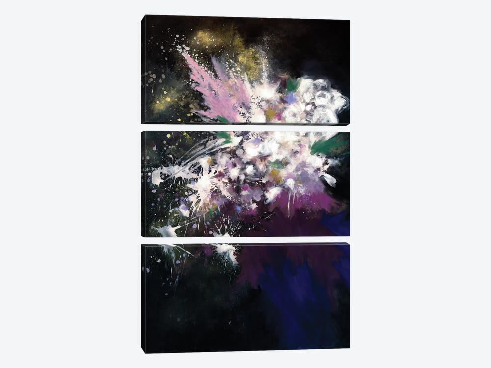 Throwing Stars by Laura Mae Dooris 3-piece Canvas Wall Art