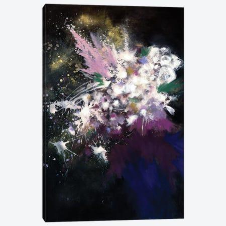 Throwing Stars Canvas Print #LMD22} by Laura Mae Dooris Art Print
