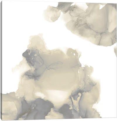 Elevate in Grey II Canvas Art Print