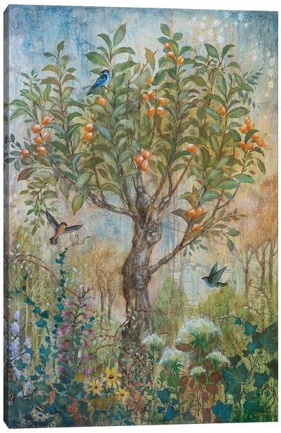 Apricot Enchantment Canvas Art Print
