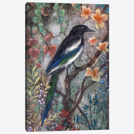 Magpie Canvas Print #LMK26} by Lisa Marie Kindley Canvas Art Print