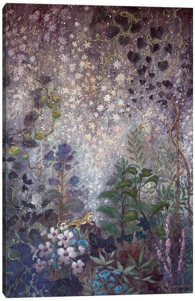Starstruck Canvas Art Print