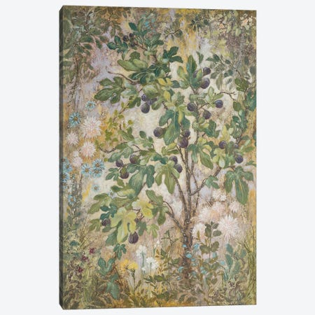 Fig Tree Canvas Print #LMK6} by Lisa Marie Kindley Canvas Artwork