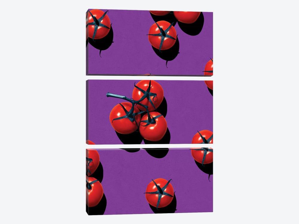 Fruit XX by LEEMO 3-piece Canvas Art