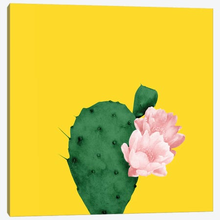 In Bloom Canvas Print #LMO108} by Leemo Canvas Wall Art