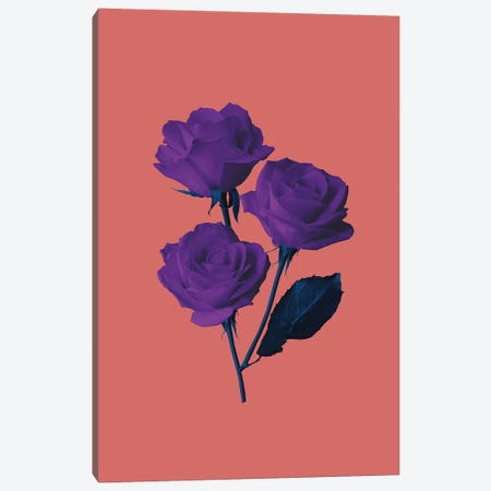 Les Fleurs du Mal Canvas Print #LMO111} by Leemo Canvas Print