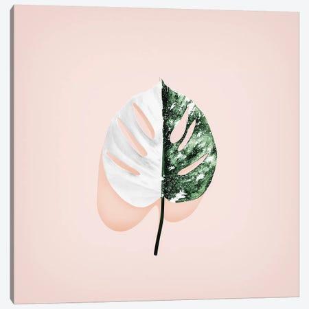 Solo I Canvas Print #LMO127} by LEEMO Canvas Print