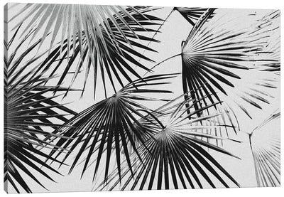Tropical V Canvas Art Print