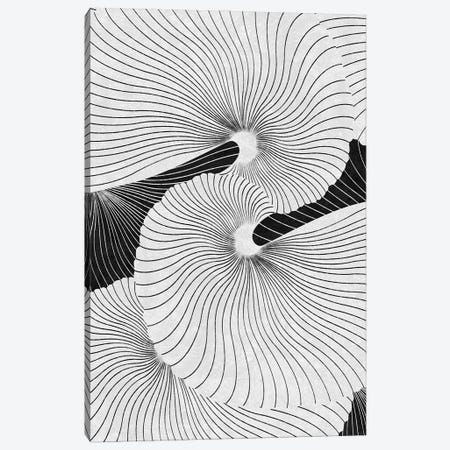 Shell Canvas Print #LMO177} by LEEMO Canvas Artwork