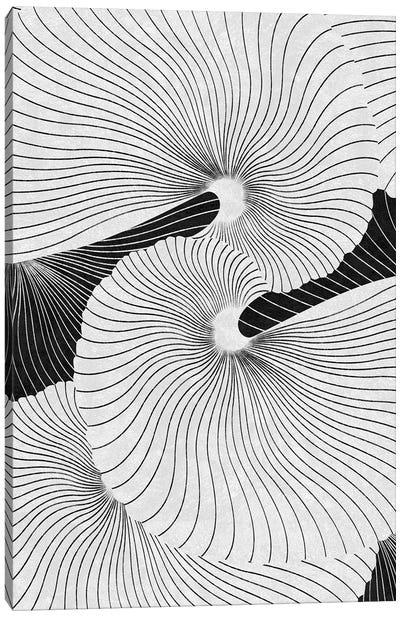 Shell Canvas Art Print