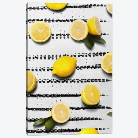 Fruit IV Canvas Print #LMO24} by Leemo Canvas Print