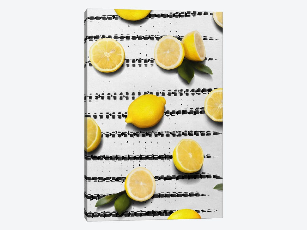 Fruit IV by Leemo 1-piece Canvas Art Print