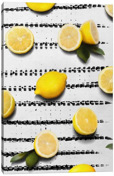 Fruit IV Canvas Art Print