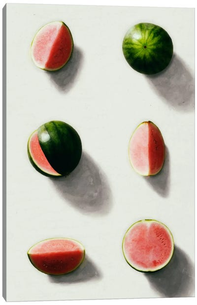 Fruit XIV Canvas Art Print