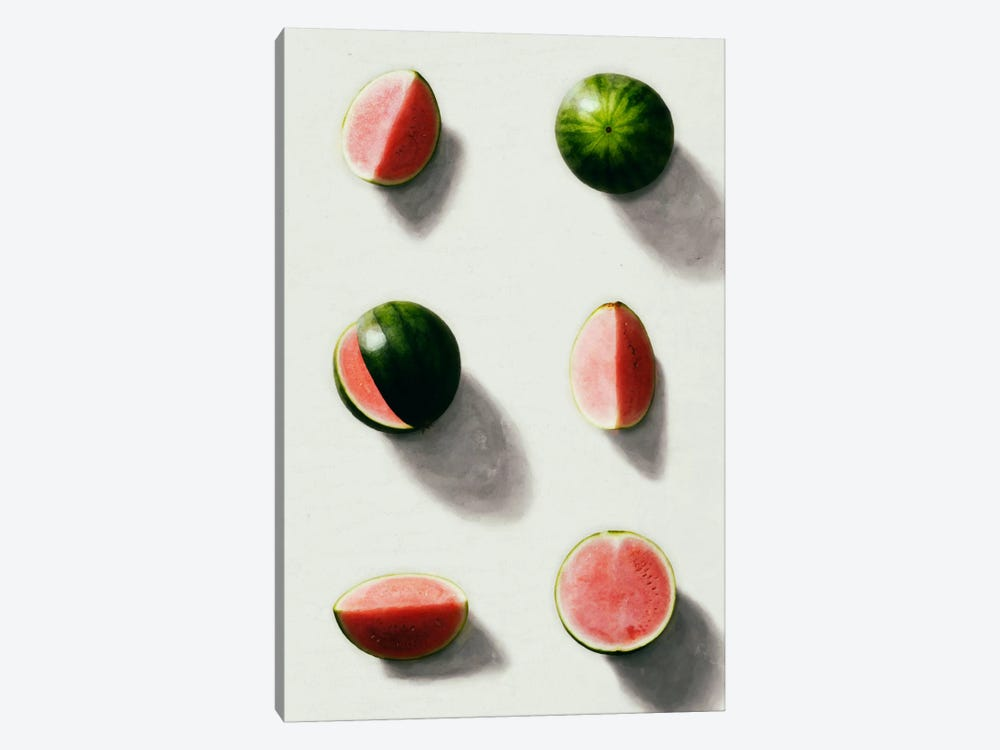 Fruit XIV by LEEMO 1-piece Canvas Wall Art