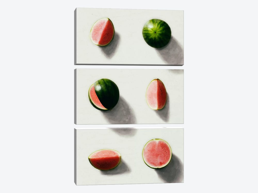 Fruit XIV by LEEMO 3-piece Canvas Artwork