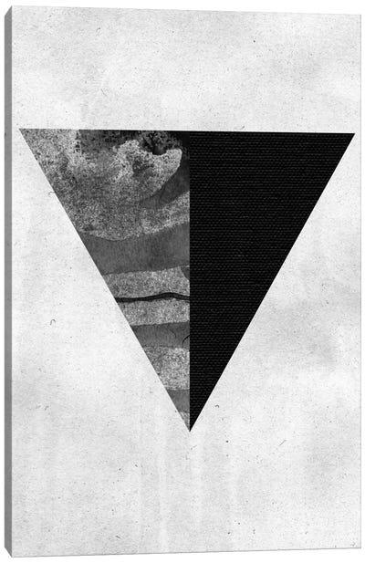 Geometry I Canvas Art Print