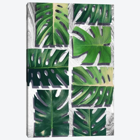Monstera Deliciosa Canvas Print #LMO53} by Leemo Art Print
