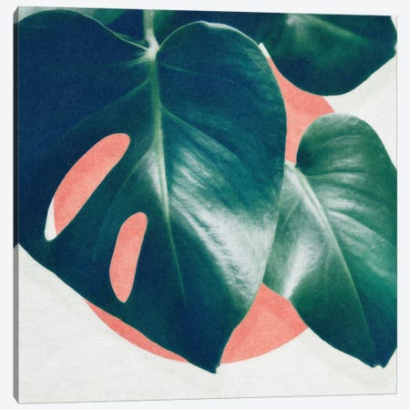Monstera I Canvas Print #LMO54} by LEEMO Canvas Artwork