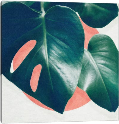 Monstera I Canvas Art Print