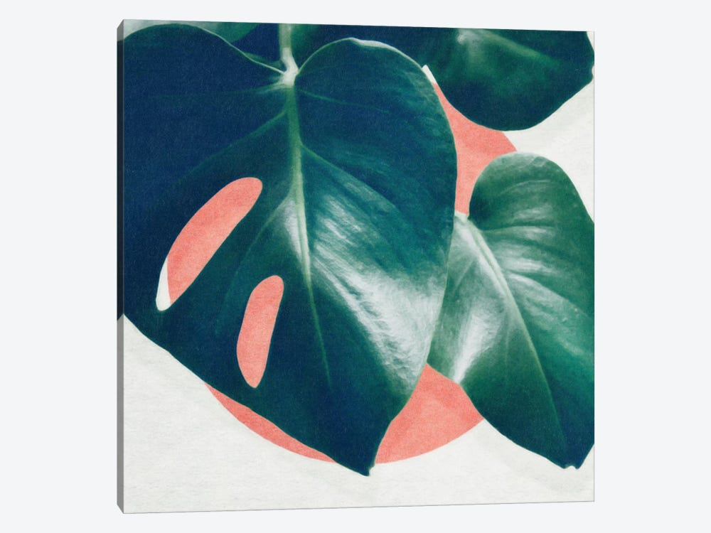 Monstera I by LEEMO 1-piece Canvas Art
