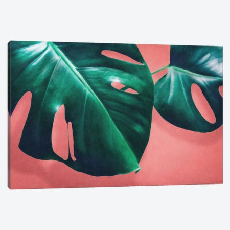 Monstera II Canvas Print #LMO55} by LEEMO Canvas Artwork