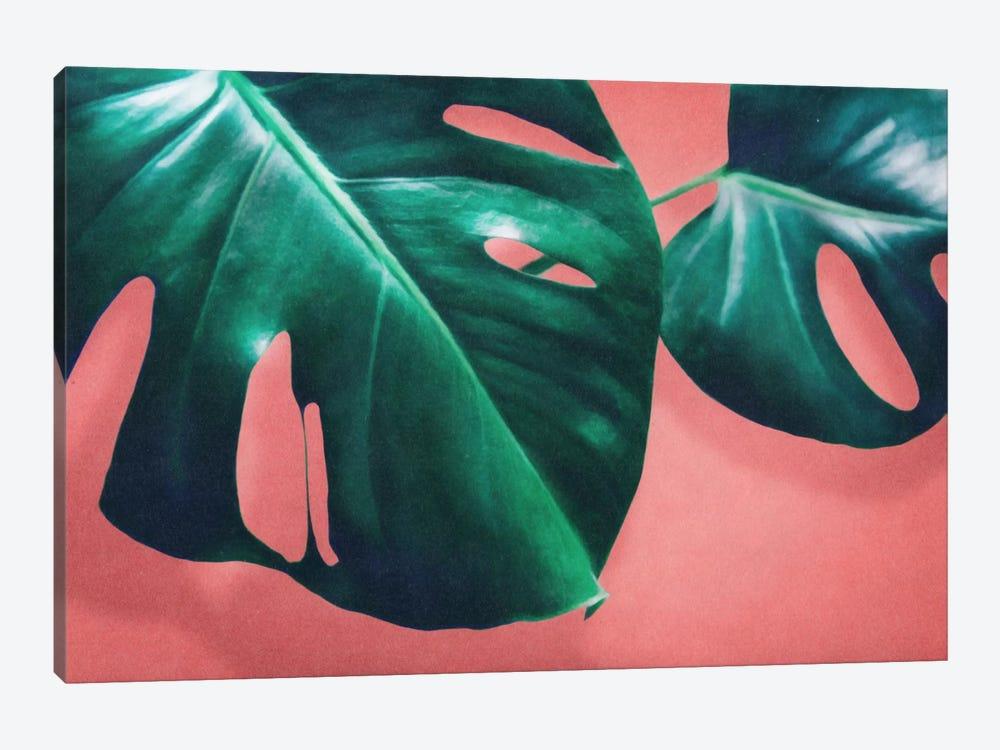 Monstera II by LEEMO 1-piece Art Print