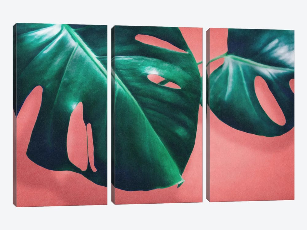 Monstera II by LEEMO 3-piece Canvas Art Print