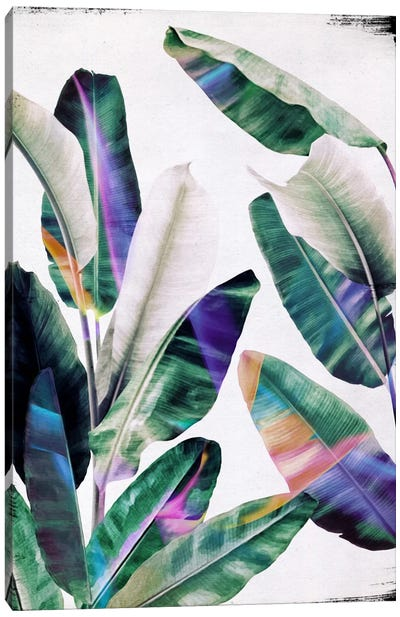 Tropical I Canvas Art Print