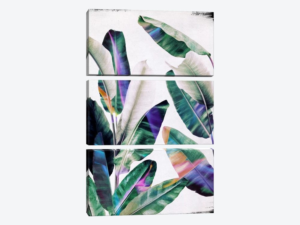 Tropical I by LEEMO 3-piece Canvas Art