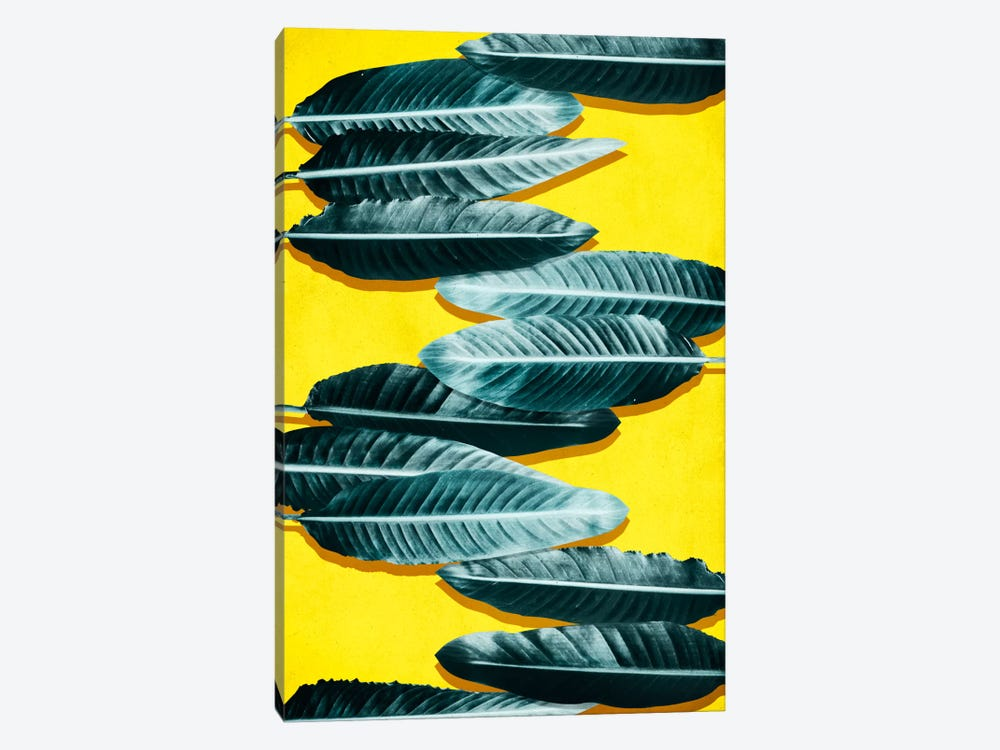 Tropical II by LEEMO 1-piece Canvas Print
