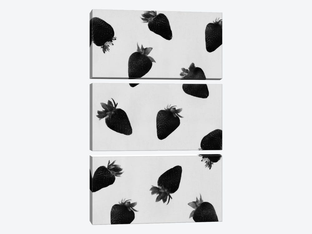 Black Strawberries by LEEMO 3-piece Canvas Artwork