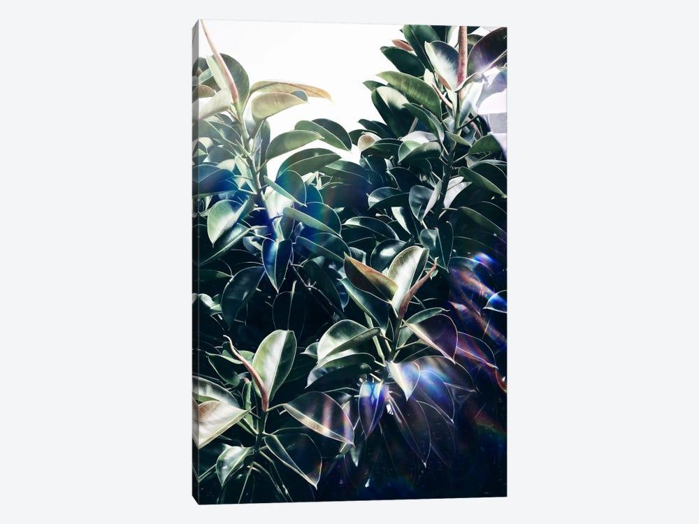 Bliss by LEEMO 1-piece Art Print