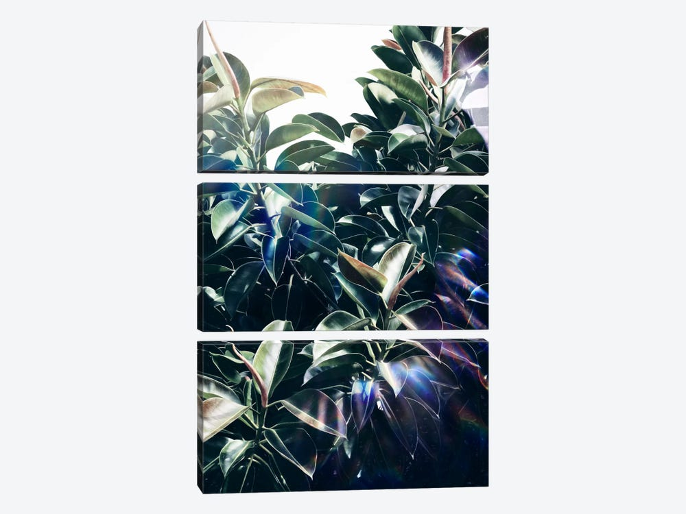 Bliss by LEEMO 3-piece Canvas Print