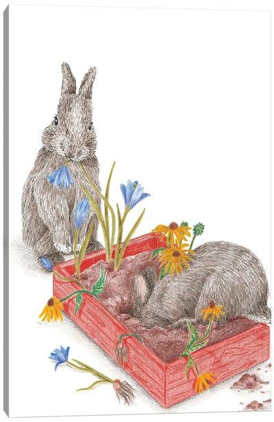 Gardening Bunnies Canvas Art Print
