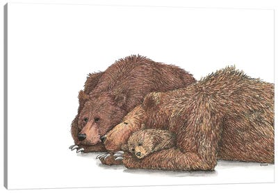 Family Of Brown Bear Canvas Art Print