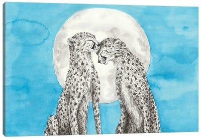 Cheetahs In Love Canvas Art Print