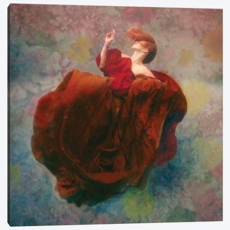 Bloom Canvas Print #LMT3} by Lola Mitchell Art Print