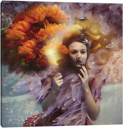 Gracie Canvas Art Print