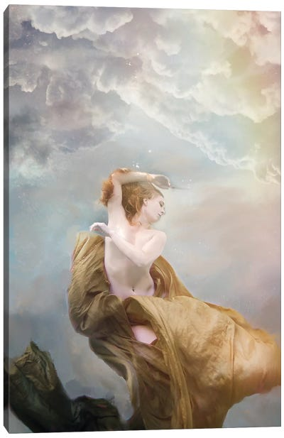 Heavenly Canvas Art Print