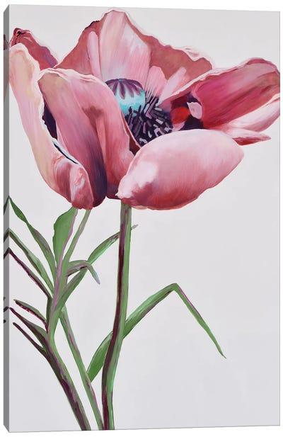 Paris Poppy Canvas Art Print