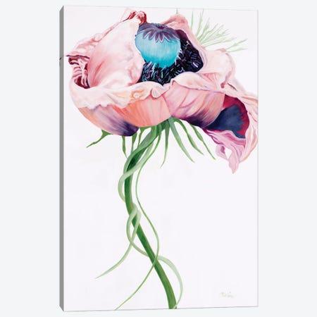 Paris Poppy II Canvas Print #LND4} by Linda Stelling Canvas Artwork