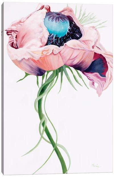Paris Poppy II Canvas Art Print