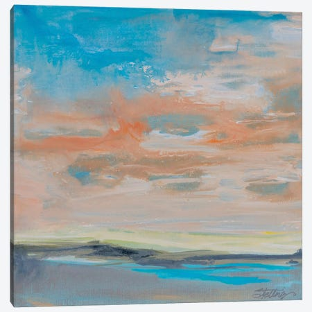 Blush Sky Canvas Print #LND6} by Linda Stelling Canvas Artwork