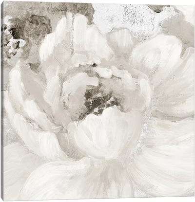 Light Grey Flowers I Canvas Art Print