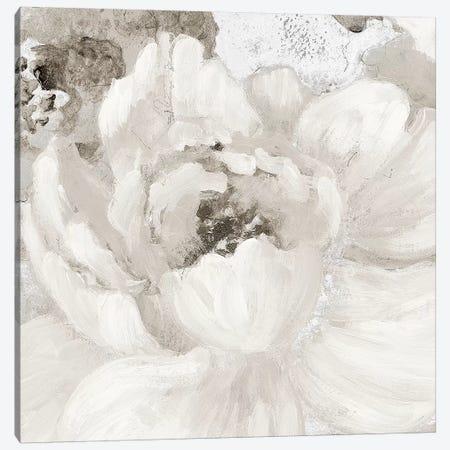 Light Grey Flowers I Canvas Print #LNL109} by Lanie Loreth Canvas Wall Art
