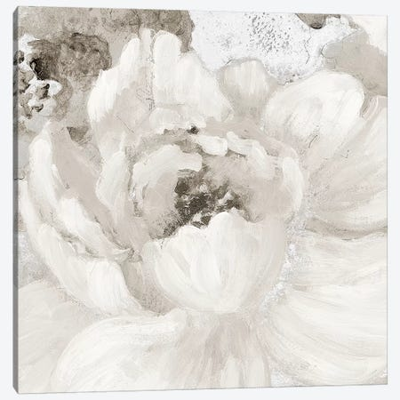 Light Grey Flowers I Canvas Print #LNL109} by Lanie Loreth Canvas Wall Art