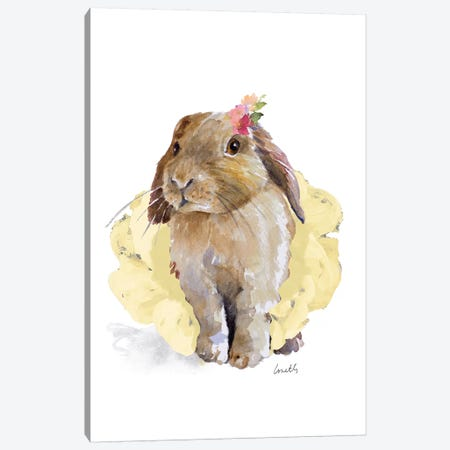 Ballet Bunny II Canvas Print #LNL10} by Lanie Loreth Canvas Artwork