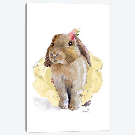 Ballet Bunny II Canvas Print #LNL10} by Lanie Loreth Canvas Artwork